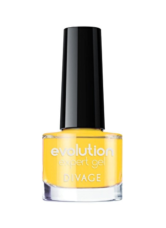 Divage Evolution No108 Oje