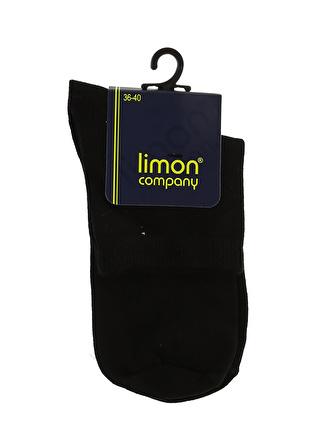 Limon Company Siyah Soket Çorap