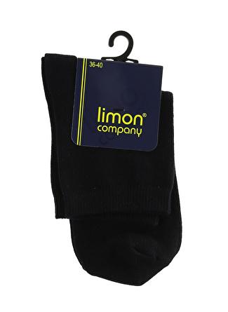 Limon Company Kadın Lacivert Soket Çorap