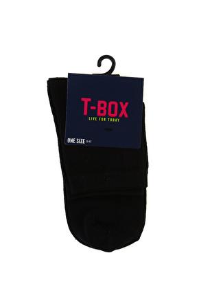 T-box Kadın Siyah Soket Çorap