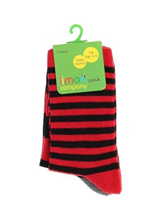 Limon Company Erkek Çocuk Soket Çorap