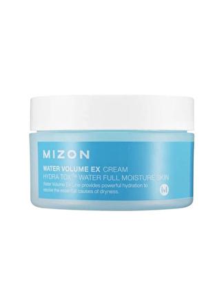 Mizon Water Volume Ex Cream Big - Kuruluk Karşıtı Nemlendirici & Yatıştırıcı Krem