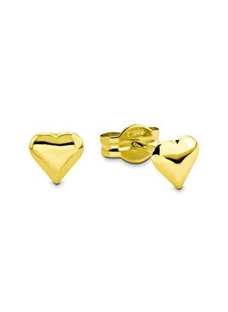 Amor Küpe 14 Ayar Altın - 2015248