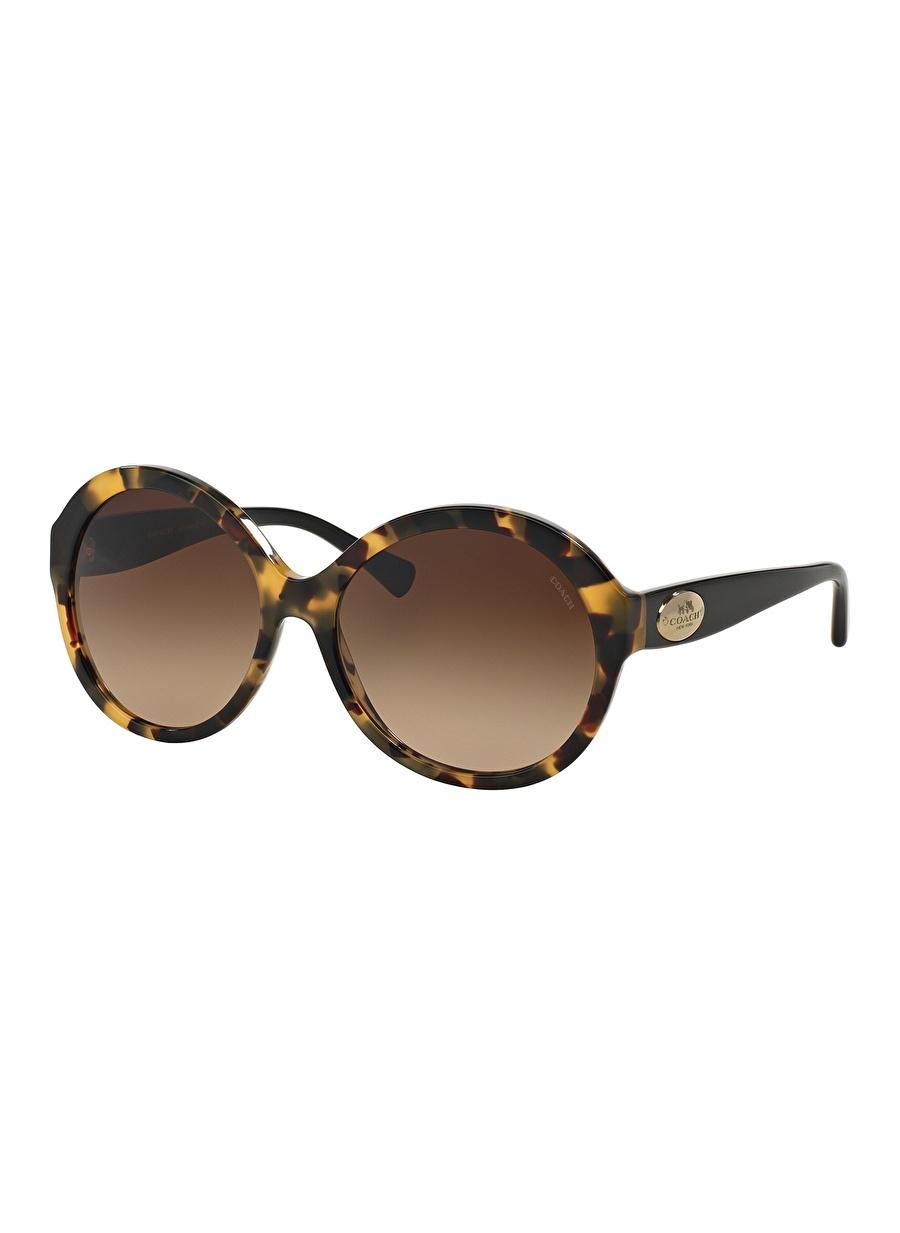Standart Renksiz Coach 0HC8149 Güneş Gözlüğü Kadın Aksesuar Gözlük