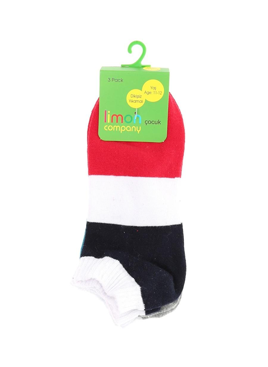 Standart Erkek Çok Renkli Limon Soket Çorap Çocuk Ev İç Giyim