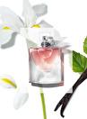 Lancome Parfüm