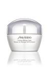 Shiseido Bakım Maskesi