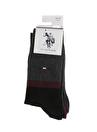 U.S. Polo Assn. Çorap