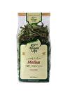 Green Life Bitki Çayı