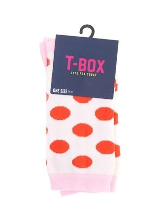 Soket Çorap T-Box PL